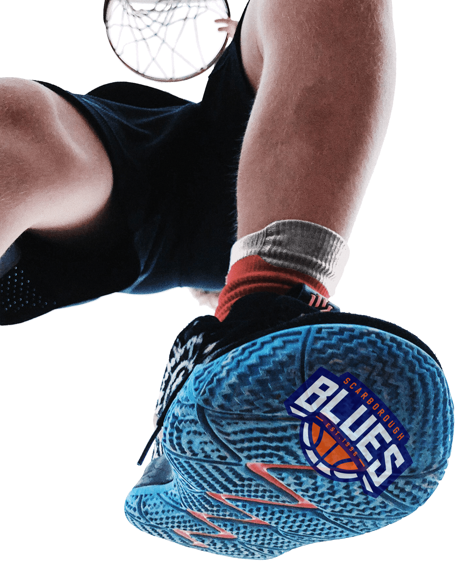 Scarborough Basketball Contact Us